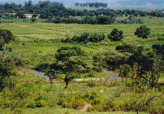 SMA abre edital para Pagamento por Serviços Ambientais