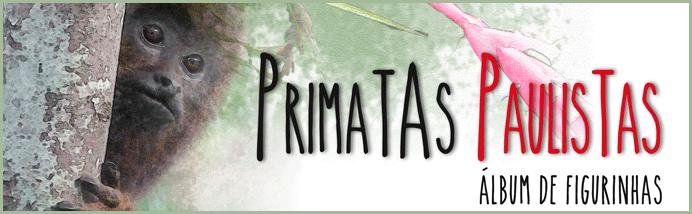 primatas-b-site