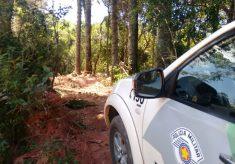 Fiscalização paralisa desmatamento no entorno do P.E. Itapetinga