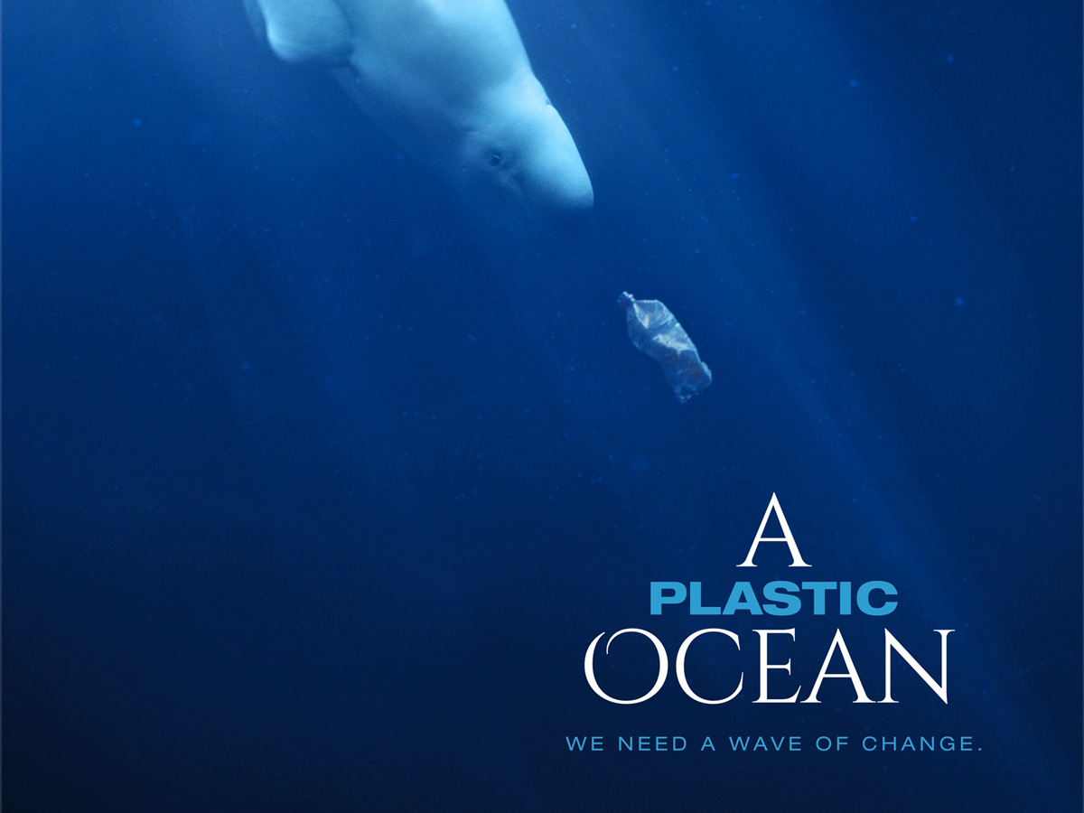 A poluição marinha por plásticos
