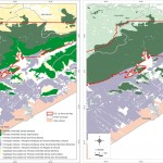 FIGURA 6: Comparação do levantamento de fitofisionomias da vegetação natural remanescente na região de Itanhaém considerando-se as Legendas IBGE e Regional.